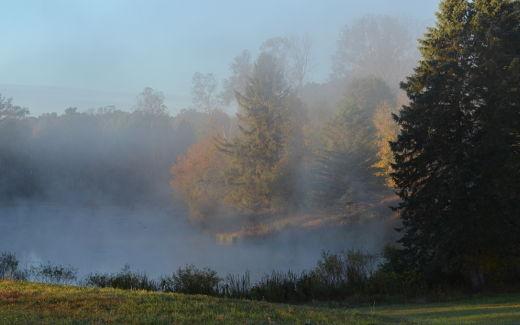 Pond, autumn